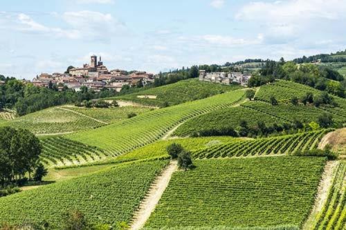 Gourmetreise-Monferrato -Weingebiet